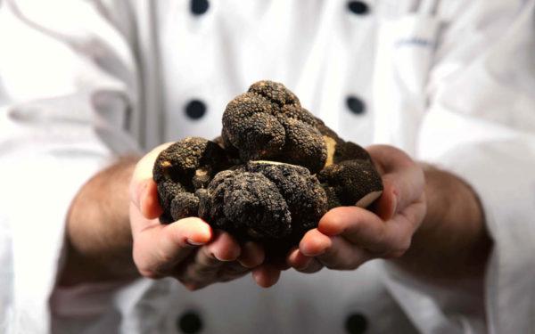 menu tartufo nero